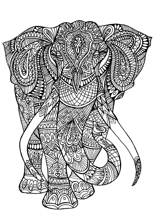Elephant Adult Coloring Pages Elephant Adult Coloring Pages 3jlp Elephant Patterns Elephants