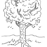 Fall Tree Coloring Pages Autumn Coloring Illustration Stock Vector Of For Fall Tree Page