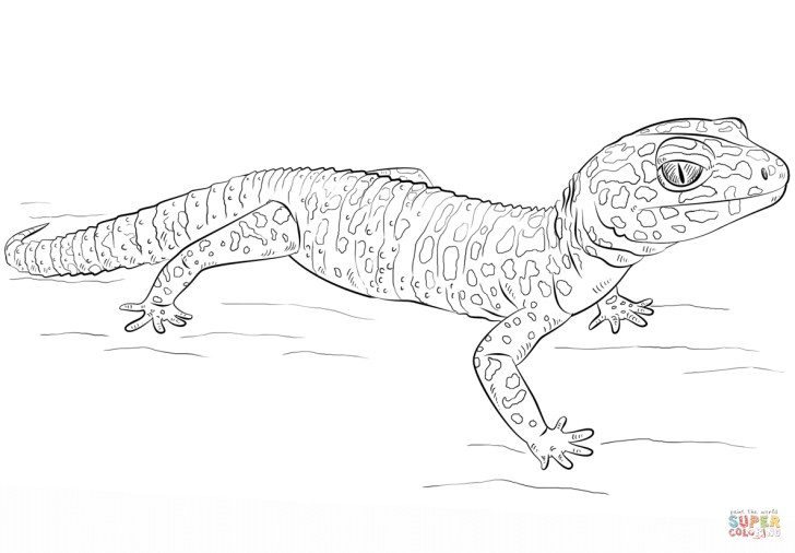 27+ Brilliant Image of Gecko Coloring Page