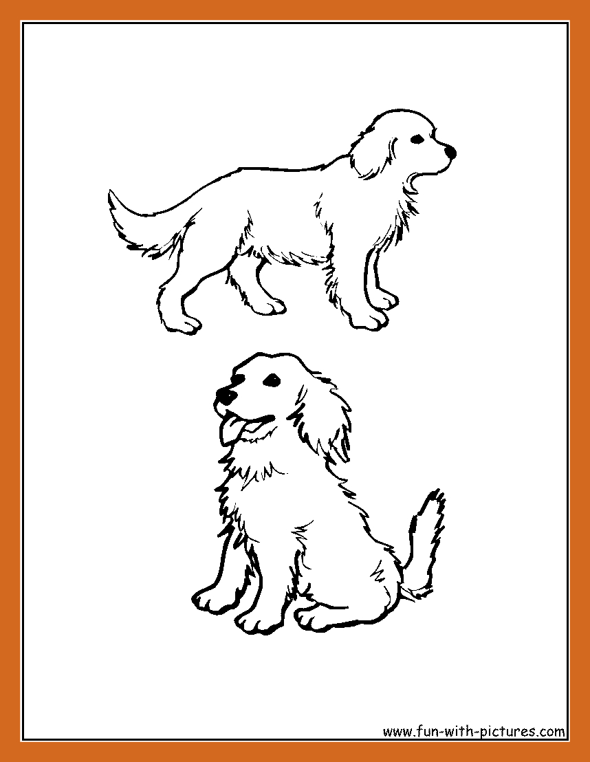 Golden Retriever Coloring Page Golden Retriever Coloring Pages Bitslice
