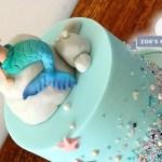 Minecraft Birthday Cake Toppers Disney Princess Birthday Cake Toppers 30 Influence Of Minecraft