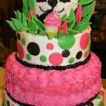 Panda Birthday Cake Teen Birthday Cakes Ocean Themed 12 Girls Kelly Roberts Designs
