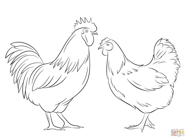 Rooster Coloring Page Rooster Coloring Page Fresh Soar And Hen Free For Bitslice