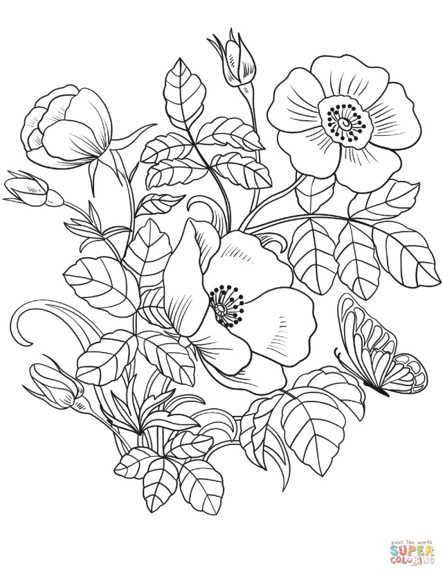 Spring Flowers Coloring Pages Spring Flowers Coloring Page Free Printable Coloring Pages