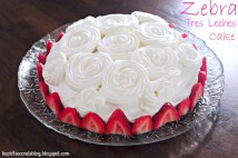 Tres Leches Birthday Cake Zebra Tres Leches Cake Back For Seconds