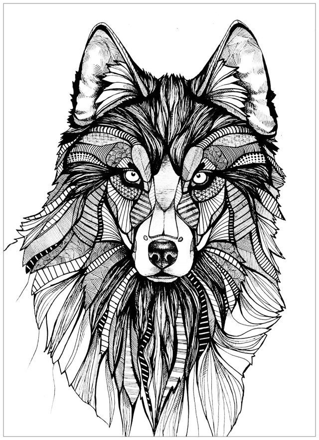 Wolf Coloring Pages For Adults Wolf 3 Wolves Adult Coloring Pages