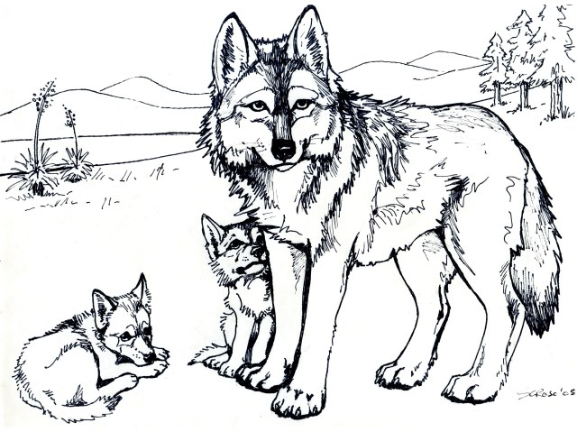 Wolf Coloring Pages For Adults Wolf Coloring Page Printable Free Wolf Coloring Pages For Adults