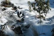 Sol, hielo y nieve