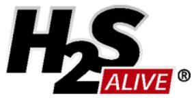 h2s alive icon