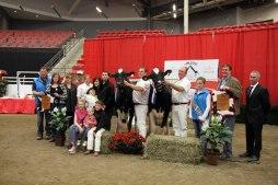 2016 National Holstein Convention,
