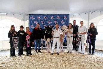 alberta dairy congress junior champions