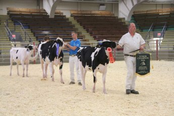 junior champions green acres show