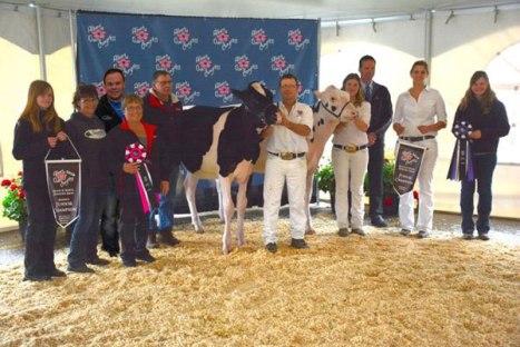Crest Family, Jr Champions Alberta Dairy Congress.