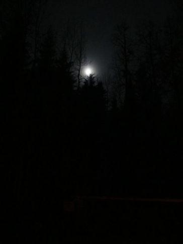 Leaving home in the dark
