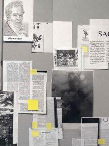 2010 alexandria monografie_coers_final1