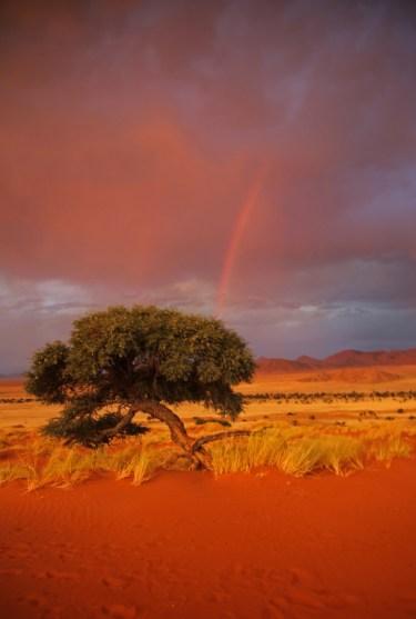 Namibia_1-32
