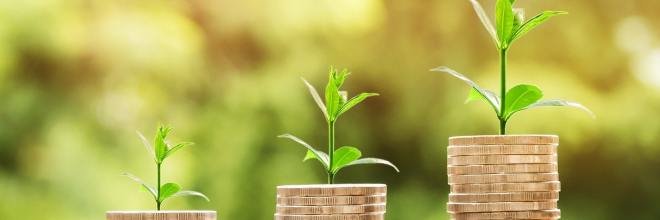 Presupuestar los costes externos al proyecto