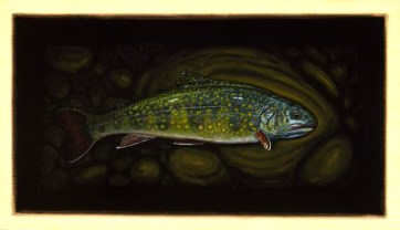 Brook Trout IV