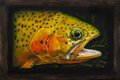 "Westslope Cutthroat Trout II, West Fork of Bitterroot River, Montana 6"" x 8.75"" Oils on Plaster Panel"