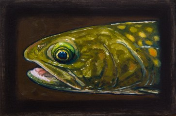 "Bull Trout, West Fork of Bitterroot River, Montana 6"" x 8.75"" Oils on Plaster Panel"