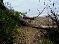 path to mouth of canadaway