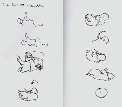 Sketchbook P 4C - Graciela baby sketches