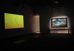 Installation view of a leech video from the creek and painting