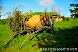 _DSC5881A Day at Hobbiton