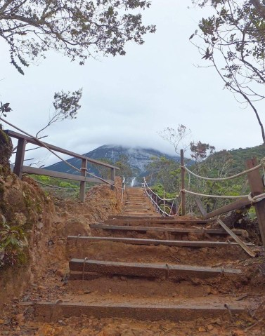 Path 1 Expedition to Mount Kinabalu