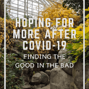 Hoping for More After Covid-19