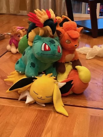 Pile o' Pokemon the group bought