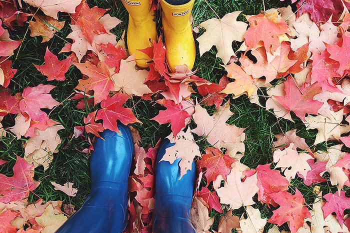 fall15-9