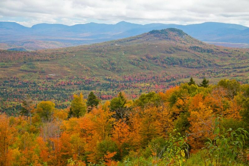 Vermont Fall Foliage Wallpaper Dreaming In Color New England Fall Foliage Albom Adventures