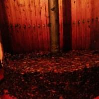 Après deuxième presse, reste du raisin pressé à jeter
