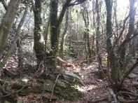 les ruines d'un village abandonné site méritant fouilles et mise en valeur