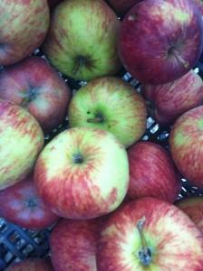 imagen de manzanas cultivo local en alborinco