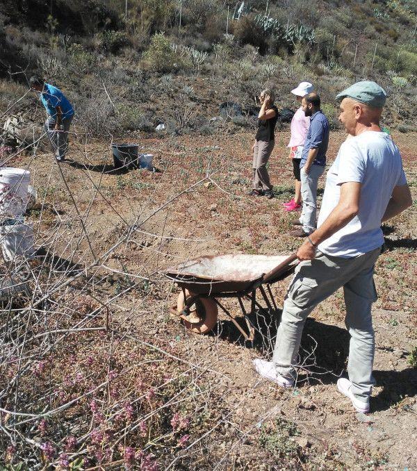 De residuo a recurso: Proyecto Mariposeando