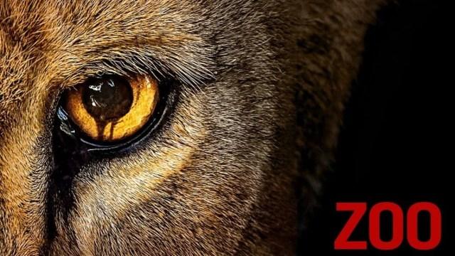 Resultado de imagen de zoo serie