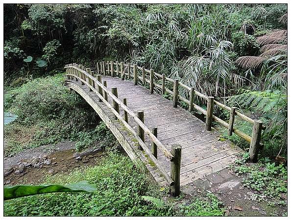 旅遊生態攝影》阿里山福山古道 - 廣光的部落格 - udn部落格