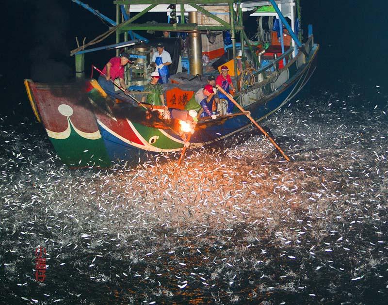 傳統磺火捕魚 - 湖光野鳥攝影日誌〈 小溫鏡頭下的光采〉 - udn部落格