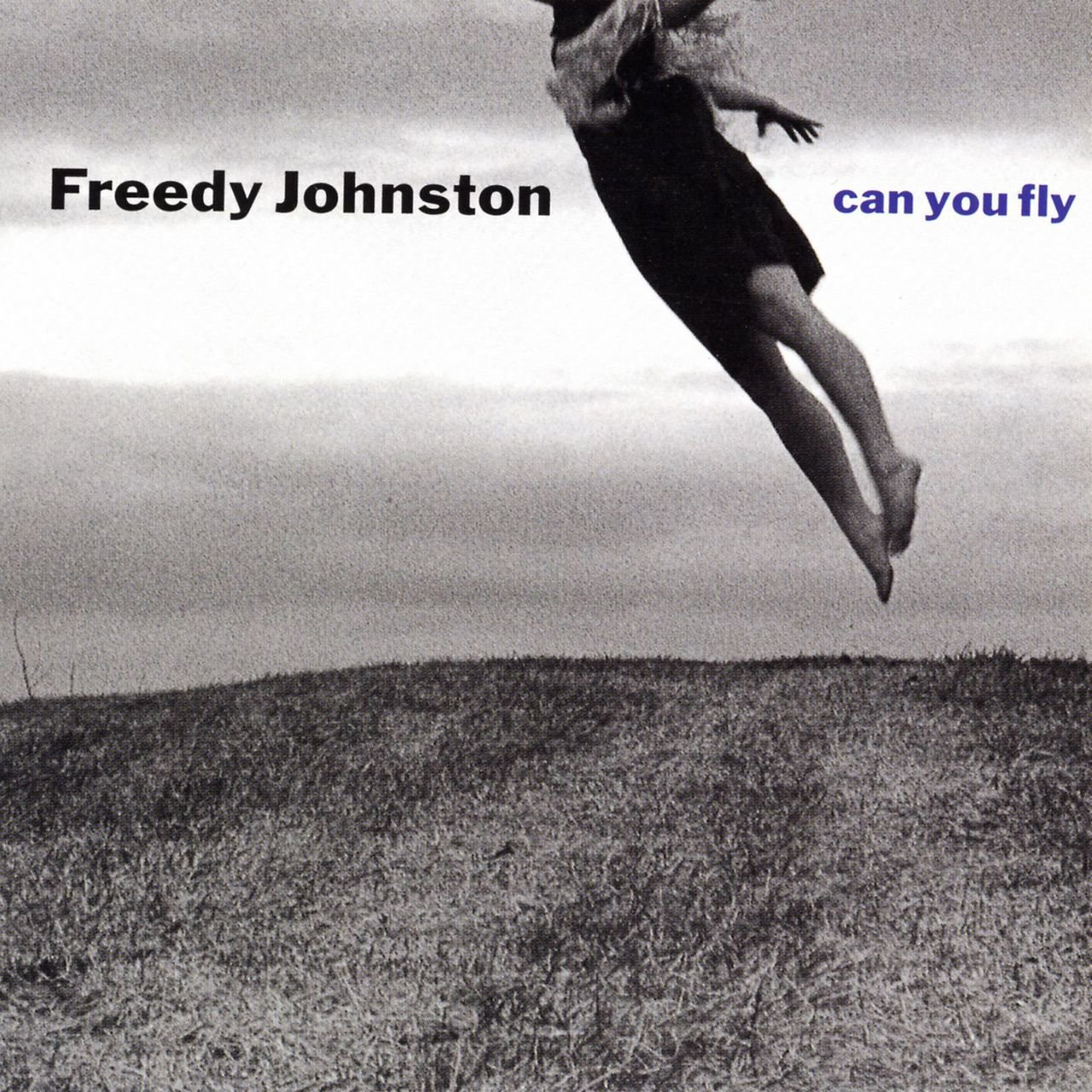 Can You Fly Freedy Johnston