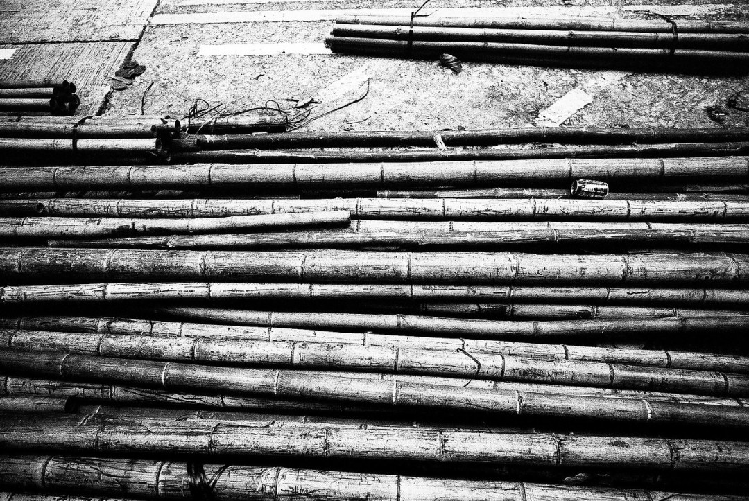 Bamboozled - Shot on Kodak EASTMAN DOUBLE-X 5222 at EI 800. Black and white film in 35mm format. Push processed 1+2/3 stops
