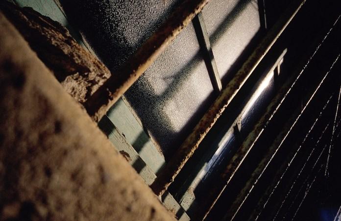 Blackout - Shot on Kodak EKTACHROME 100VS (E100VS) at EI 100. Color reversal (slide) film in 35mm format.