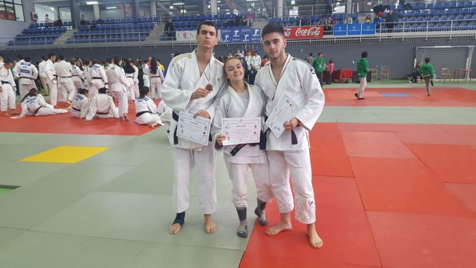 Judo Alcorcón