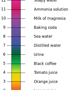 ph scale with annotated examples of chemicals at each integer value author edward stevens also measuring the mineral waters alcademics rh