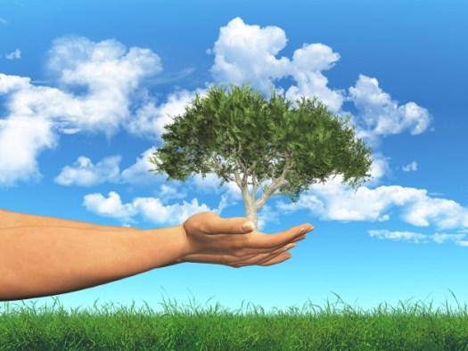 6 buenas prácticas para hacer Ecoturismo - https://www.freepik.es