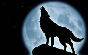 Hombre-lobo-aullando
