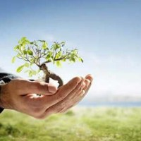 Reactivación económica y protección al medio ambiente y a la salud deben ir de la mano en la #NuevaNormalidad