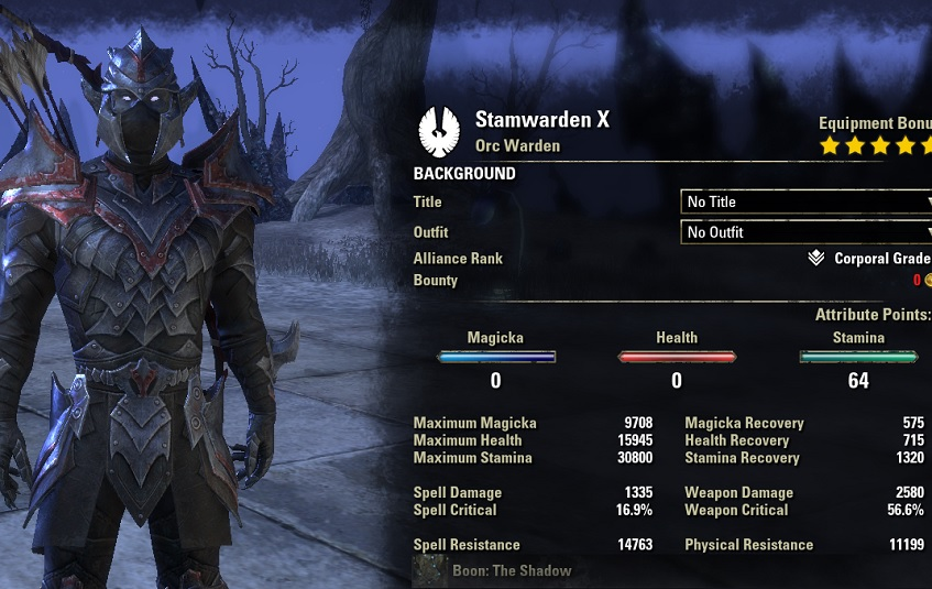 stamina warden bow build