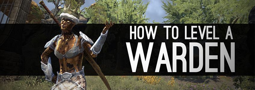 How to level a Warden in ESO